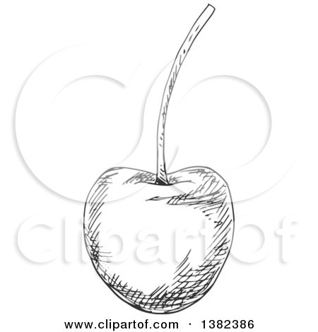 Clipart of a Black and White Sketched Cherry - Royalty Free Vector Illustration by Vector Tradition SM