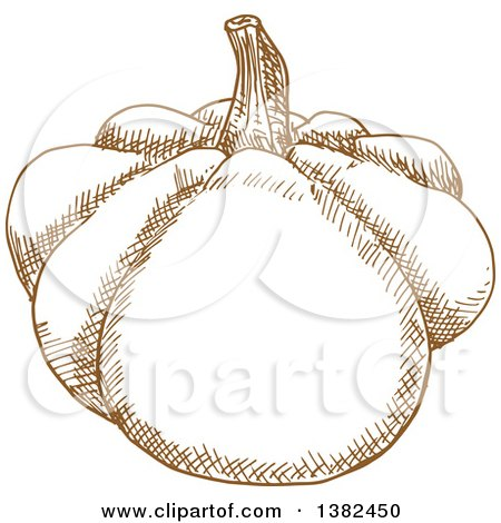 Clipart of a Brown Sketched Pattypan Squash - Royalty Free Vector Illustration by Vector Tradition SM