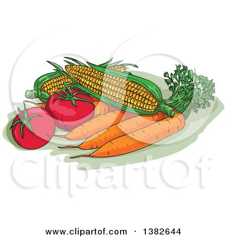 Clipart of Sketched Fresh Corn, Carrots and Tomatoes - Royalty Free Vector Illustration by patrimonio