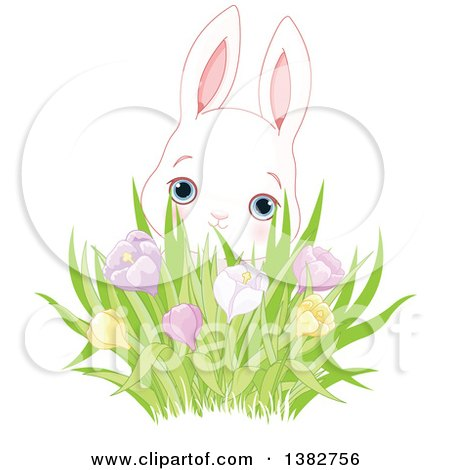 Clipart of a Cute White Bunny Rabbit Behind a Cluster of Spring Crocus Flowers - Royalty Free Vector Illustration by Pushkin