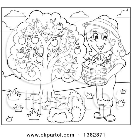 Clipart of a Black and White Lineart Female Farmer Harvesting Apples - Royalty Free Vector Illustration by visekart
