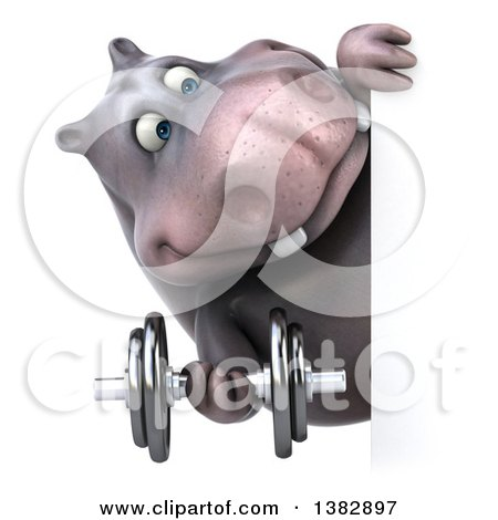 Clipart of a 3d Henry Hippo Character Working Out, on a White Background - Royalty Free Illustration by Julos