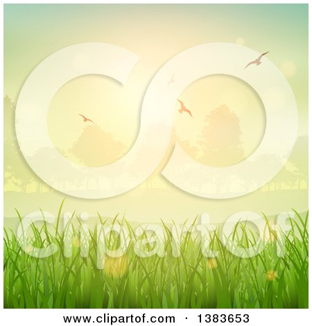 Clipart of a Background of Green Grasses, Sunrise, Trees and Flying Birds - Royalty Free Vector Illustration by KJ Pargeter