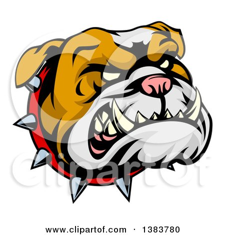 Clipart of a Snarling Bulldog Mascot Face with a Spiked Collar - Royalty Free Vector Illustration by AtStockIllustration