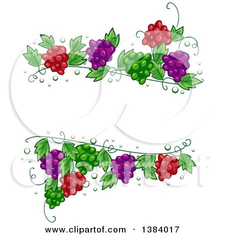 Clipart Of A Green Red And Purple Grape Vine Frame Royalty Free Vector Illustration