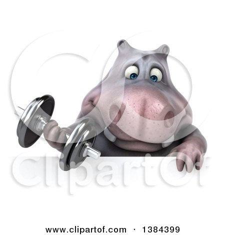 Clipart of a 3d Henry Hippo Character Working out with a Dumbbell over a Sign, on a White Background - Royalty Free Illustration by Julos