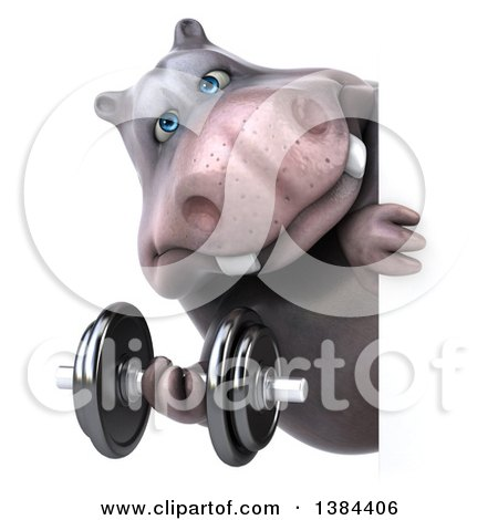 Clipart of a 3d Henry Hippo Character Working out with a Dumbbell Around a Sign, on a White Background - Royalty Free Illustration by Julos