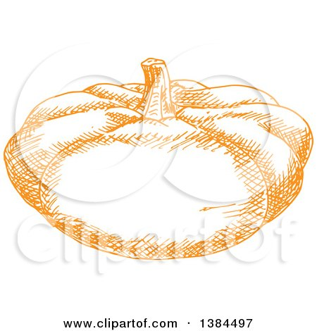 Clipart of a Sketched Orange Pumpkin or Squash - Royalty Free Vector Illustration by Vector Tradition SM