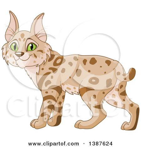 Clipart of a Cute Bobcat with Green Eyes - Royalty Free Vector Illustration by Pushkin