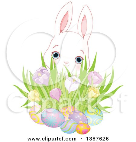 Clipart of a Cute White Bunny Rabbit Behind a Cluster of Spring Crocus Flowers and Easter Eggs - Royalty Free Vector Illustration by Pushkin