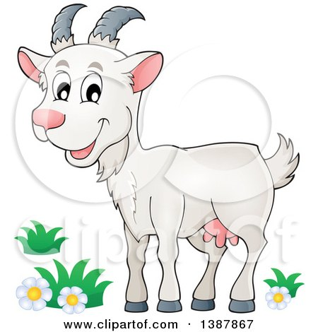 clipart of a cartoon happy white goat royalty free vector rh clipartof com goatee clipart clip art goatee