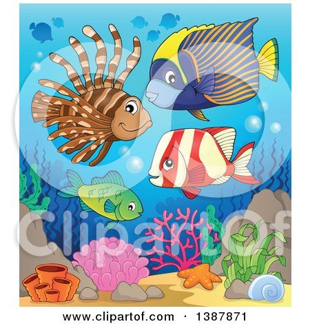 Clipart of Saltwater Marine Fish at a Reef - Royalty Free Vector Illustration by visekart