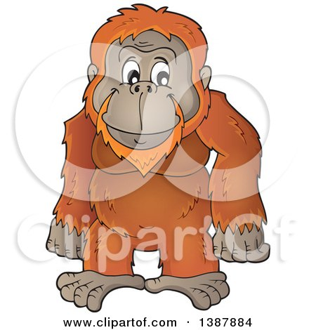 Clipart of a Cartoon Happy Orangutan Monkey - Royalty Free Vector Illustration by visekart