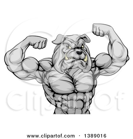 Clipart of a Muscular Tough Gray Bulldog Man Mascot Flexing, from the Waist up - Royalty Free Vector Illustration by AtStockIllustration