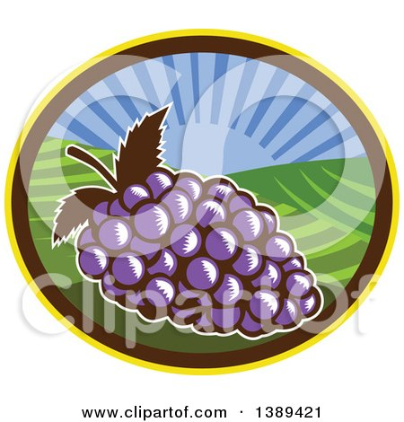 Clipart of a Retro Woodcut Bunch of Purple Grapes in an Oval with a Sunrise or Sunset - Royalty Free Vector Illustration by patrimonio
