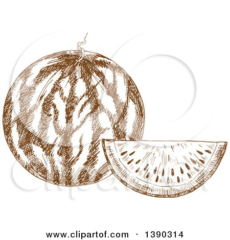 Clipart of a Brown Sketched Watermelon - Royalty Free Vector Illustration by Vector Tradition SM