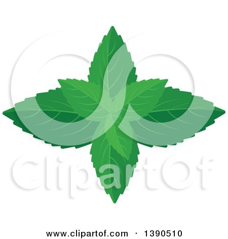 Clipart of a Culinary Spice Herb, Mint - Royalty Free Vector Illustration by Vector Tradition SM