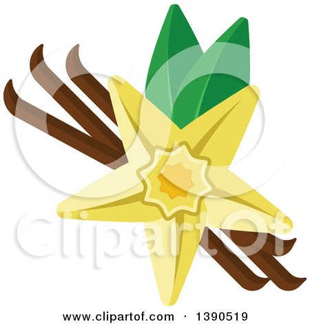 Clipart of a Culinary Spice Herb, Vanilla - Royalty Free Vector Illustration by Vector Tradition SM