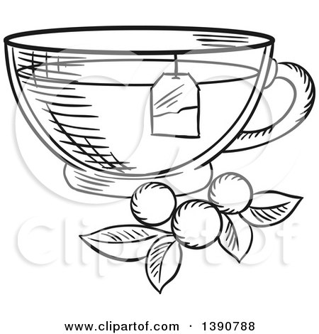 Black and White Sketched Tea Cup with Berries and Leaves Posters, Art Prints