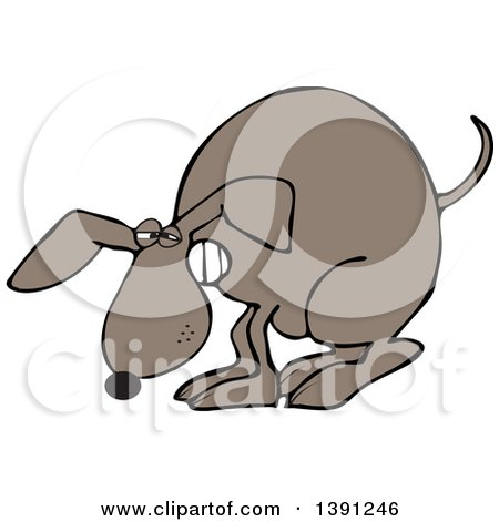 Clipart of a Cartoon Constipated Brown Dog Straining and Pooping - Royalty Free Vector Illustration by djart