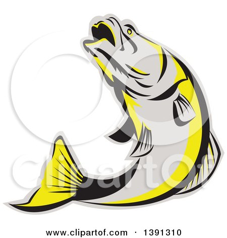 Clipart of a Retro Gray Black and Yellow Barramundi Asian Sea Bass Fish Jumping - Royalty Free Vector Illustration by patrimonio