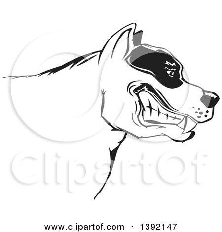 Clipart of a Tough Snarling Black and White Pit Bull Dog Head in Profile - Royalty Free Vector Illustration by David Rey
