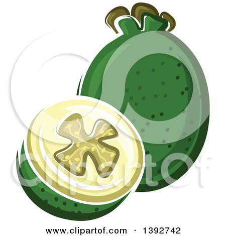 Clipart of a Feijoa Fruit, or Pineapple Guava, Whole and Halved - Royalty Free Vector Illustration by Vector Tradition SM