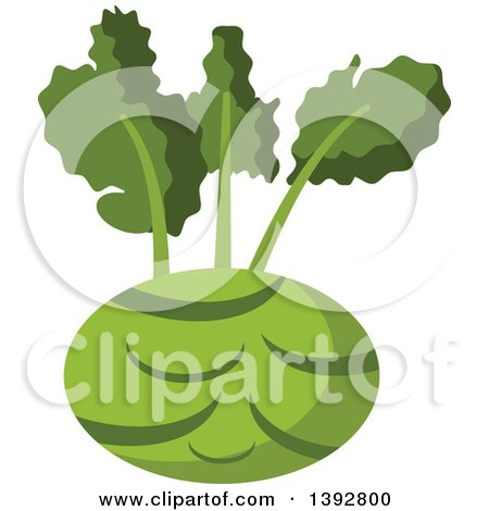 Clipart of a Flat Design Kohlrabi - Royalty Free Vector Illustration by Vector Tradition SM