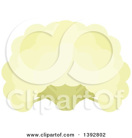 Clipart of a Flat Design Cauliflower Head - Royalty Free Vector Illustration by Vector Tradition SM