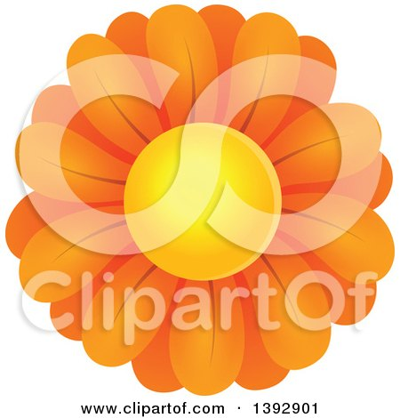 Clipart of an Orange Daisy Flower - Royalty Free Vector Illustration by visekart
