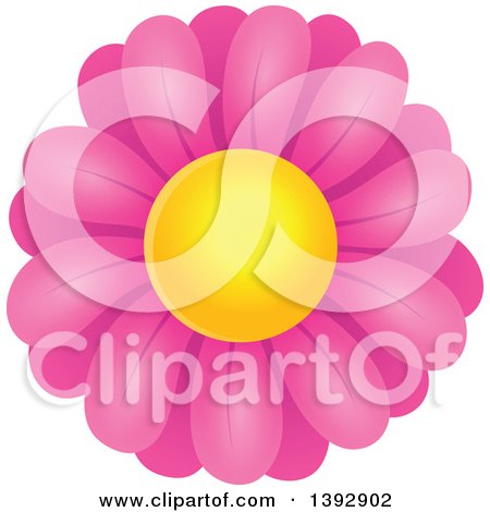 Clipart of a Pink Daisy Flower - Royalty Free Vector Illustration by visekart