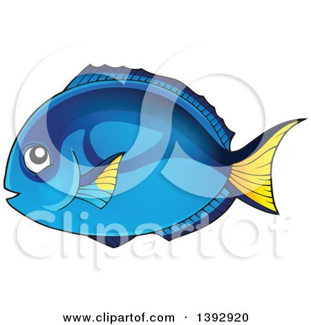 Clipart of a Hippo Blue Tang Marine Fish - Royalty Free Vector Illustration by visekart
