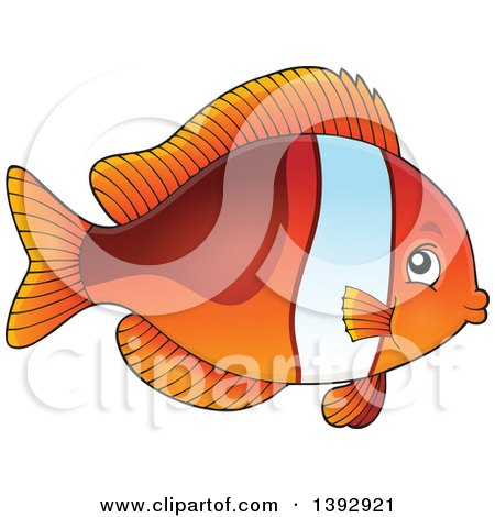Clipart of a Clownfish Marine Fish - Royalty Free Vector Illustration by visekart