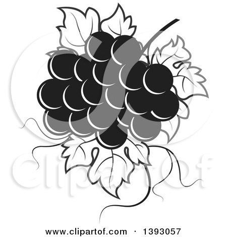 Clipart of a Black and White Bunch of Grapes - Royalty Free Vector Illustration by Lal Perera