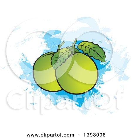 Clipart of Guava Fruits and Leaves over Paint Strokes - Royalty Free Vector Illustration by Lal Perera