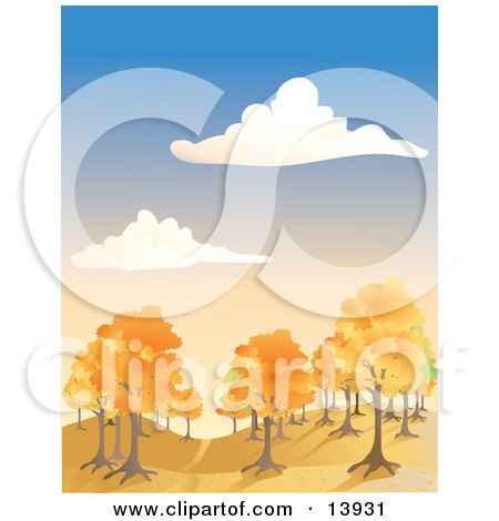 Autumn Trees Under a Blue Cloudy Sky Posters, Art Prints