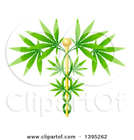 Clipart of a Medical Marijuana Design with a Cannabis Plant Growing on a Gold Caduceus - Royalty Free Vector Illustration by AtStockIllustration
