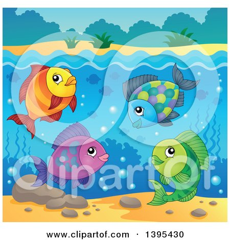 Clipart of a Group of Freshwater Fish Underwater - Royalty Free Vector Illustration by visekart