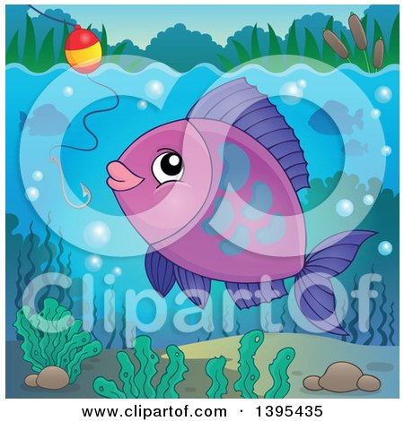 Clipart of a Purple Freshwater Fish Looking at a Hook and Bobber - Royalty Free Vector Illustration by visekart