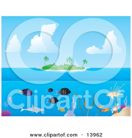 Fish and Sharks Swimming Underwater at a Tropical Reef Near an Island Clipart Illustration by Rasmussen Images