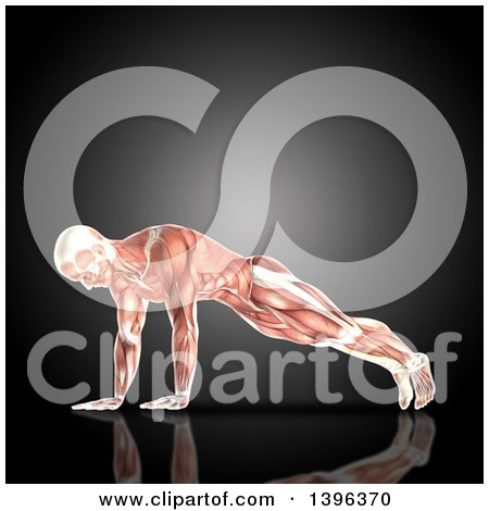 Clipart of a 3d Anatomical Man Doing Pushups, with Visible Muscles, on Gray - Royalty Free Illustration by KJ Pargeter