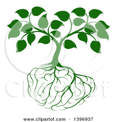 Clipart of a Leafy Green Tree with Brain Roots - Royalty Free Vector Illustration by AtStockIllustration