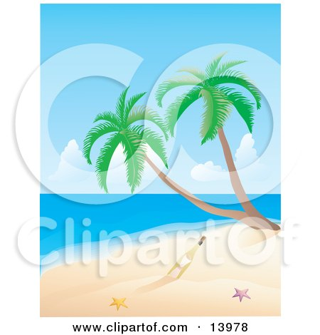 Message in a Bottle Near Two Starfish and Palm Trees on a Deserted Tropical Beach Clipart Illustration by Rasmussen Images