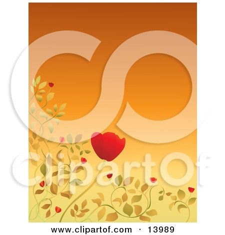 Pretty Red Poppy and Leaves Bordering an Orange Background Clipart Illustration by Rasmussen Images