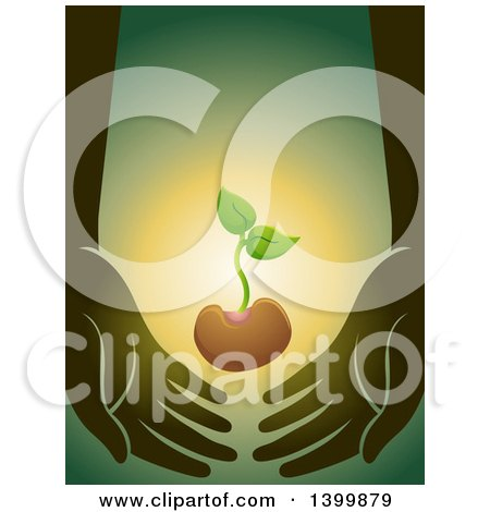 Clipart of a Seedling Plant Supported by Hands - Royalty Free Vector Illustration by BNP Design Studio