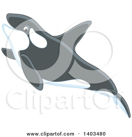 Clipart of a Cute Killer Whale Swimming - Royalty Free Vector Illustration by Alex Bannykh