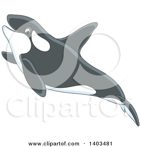 Clipart of a Cute Killer Whale Orca Swimming - Royalty Free Vector Illustration by Alex Bannykh