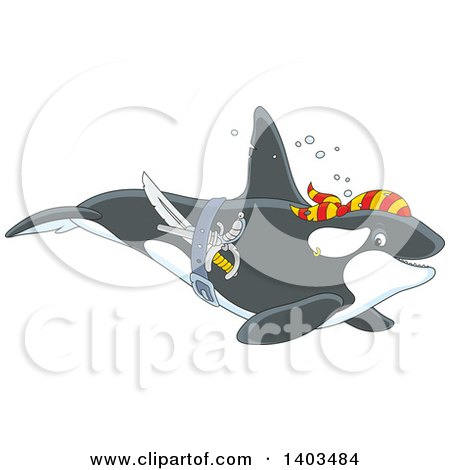 Clipart of a Pirate Killer Whale Orca Swimming - Royalty Free Vector Illustration by Alex Bannykh
