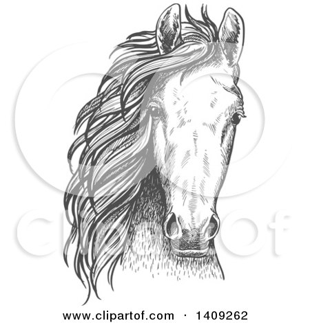 Clipart of a Dark Gray Sketched Horse Head - Royalty Free Vector Illustration by Vector Tradition SM