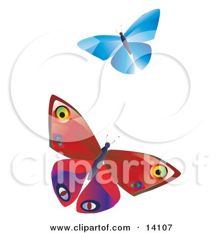 Two Colorful Butterflies, One Blue One Red With Patterns, Fluttering Over A White Background Insect Clipart Illustration by Rasmussen Images